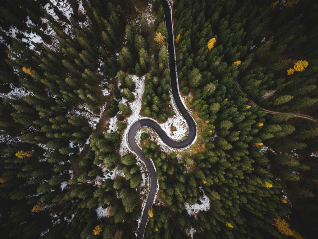 צילום אווירי של יער מסביב אגם
